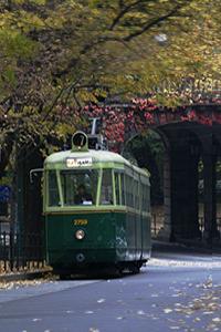 Visita guidata Torino in tram
