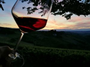 Glass of Barolo pairing vineyards Piedmont
