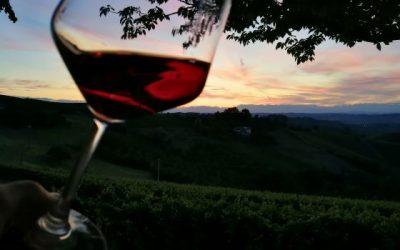 "Retracing the ""myth"" of Barolo"