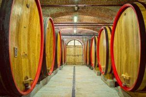wine cellar Barolo red wine Piedmont